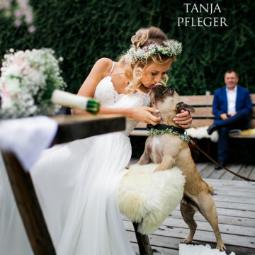Wedding photographer Tanja Pfleger (office). Photo of 28 December